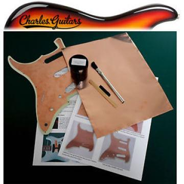 GUITAR SHIELD SHIELDING PAINT  ***30ML KIT+ COPPER FOIL*** (CH50007)