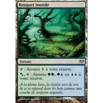 *MRM* ENG bosquet inondé ( Flooded Grove ) MTG Eventide