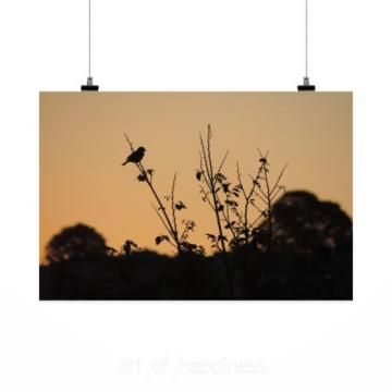 Stunning Poster Wall Art Decor Sparrow Birds Eventide Twilight 36x24 Inches