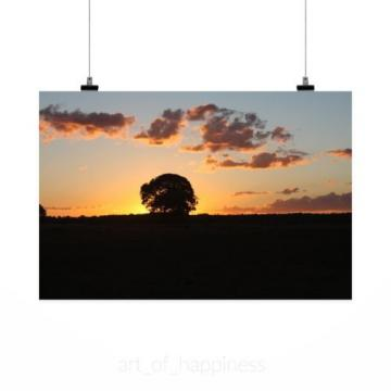 Stunning Poster Wall Art Decor Sol Landscape Farm Sunset Eventide 36x24 Inches