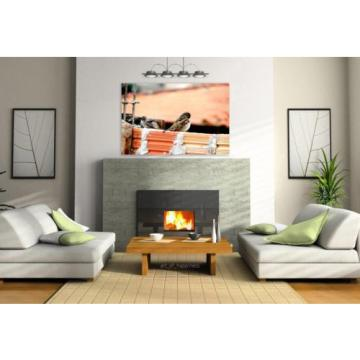 Stunning Poster Wall Art Decor Pigeons Nature Eventide Sparrow 36x24 Inches