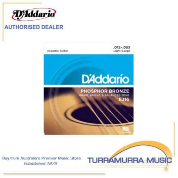 D'Addario EJ16 Phosphor Bronze Light Acoustic Guitar Strings 12-53 Daddario