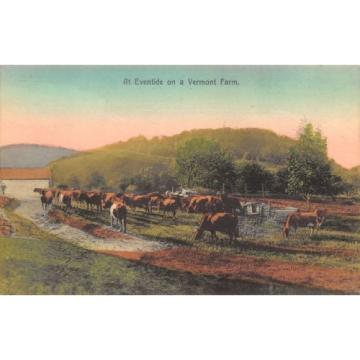 Vermont~Handcolored~Cattle @ Eventide on Farm~Postcard c1910 GMCC