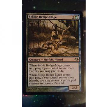 MTG  - Selkie Hedge-Mage - Eventide Uncommon 1st class postage