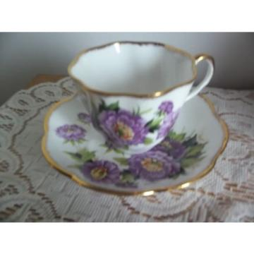 Salisbury England EVENTIDE BONE CHINA TEA CUP & SAUCER Purple Floral Pattern