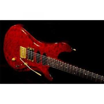 BRUBAKER B 1 CUSTOM GUITAR.  1999.  First in B Series AAA Cherry Quilted Maple.