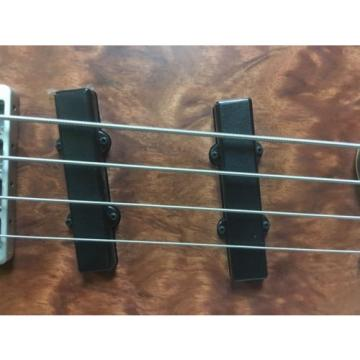 Washburn CB-4 QB Cocobolla Classic Bass With Gig Bag