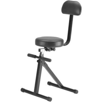 Portable Entertainers Chair - New