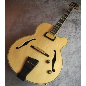 Ibanez PM200 Pat-Metheny Hollow Body Electric Guitar made in japan from japan