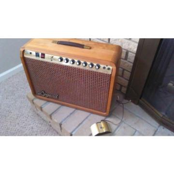 Legend Rock N Roll 50 guitar amplifier